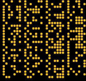 binary007