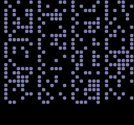 binary009
