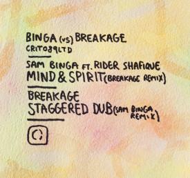 binga_v_breakage